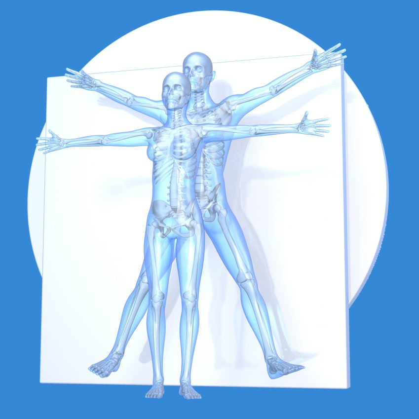 digital Da Vinci Vitruvian Man
